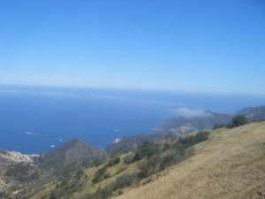 Catalina GF
